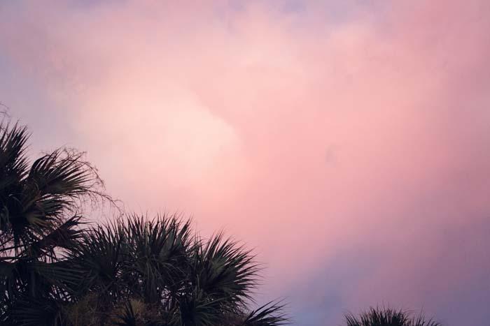 Florida026